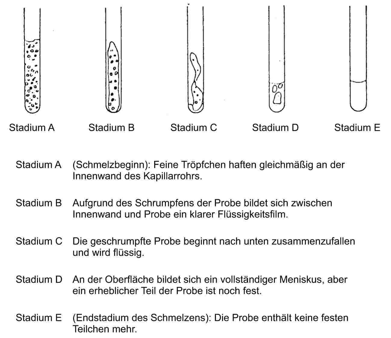 Groß Humanressourcen Nehmen Objektive Proben Wieder Auf Bilder ...