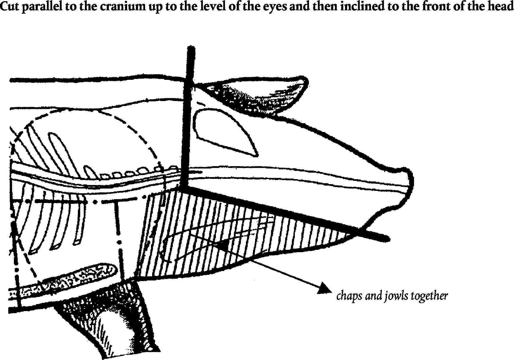 Eur Lex C2011137full En Cascade 29 Boat Wiring Diagram Image