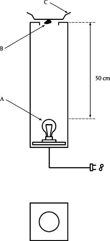 Wie kann man ein Vakuum an ein oberirlisches Becken anhaken
