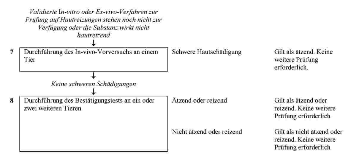 Schön Bilder Von Externen Weiblichen Fortpflanzungssystems Galerie ...